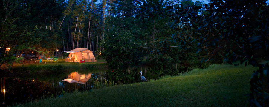 campsites-at-fort-wilderness-resort-00-full-2